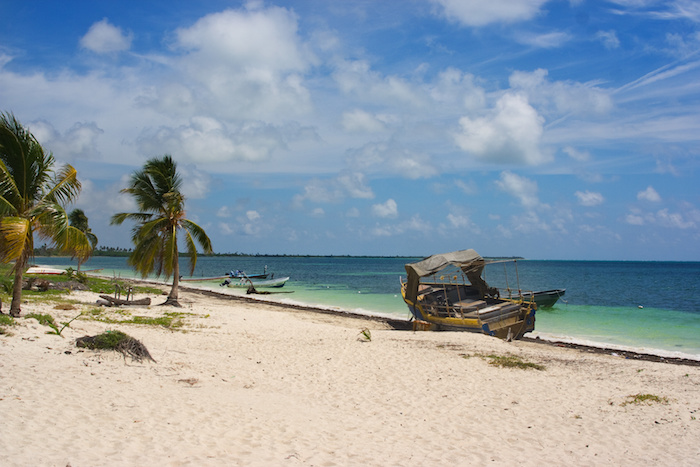 tropical beach whit coconut palms and fishermans boats
